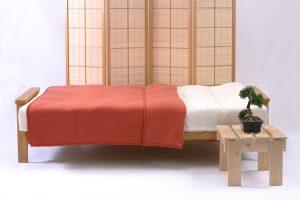 Iowa 3 Seater Futon Bed